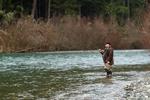 steelhead fisherman photo