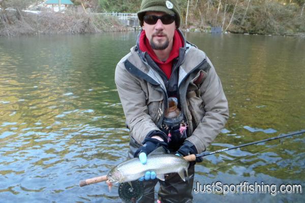 Photo of a steelhead trout