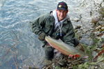 steelhead trout photo